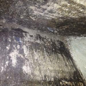 Dirty Evap Coil 1