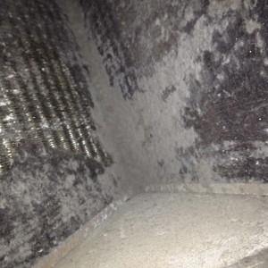 Dirty Evap Coil 4